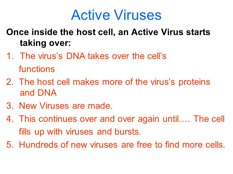 Active Viruses Once inside the host cell, an Active Virus starts taking over: The virus's DNA takes over the cell's.