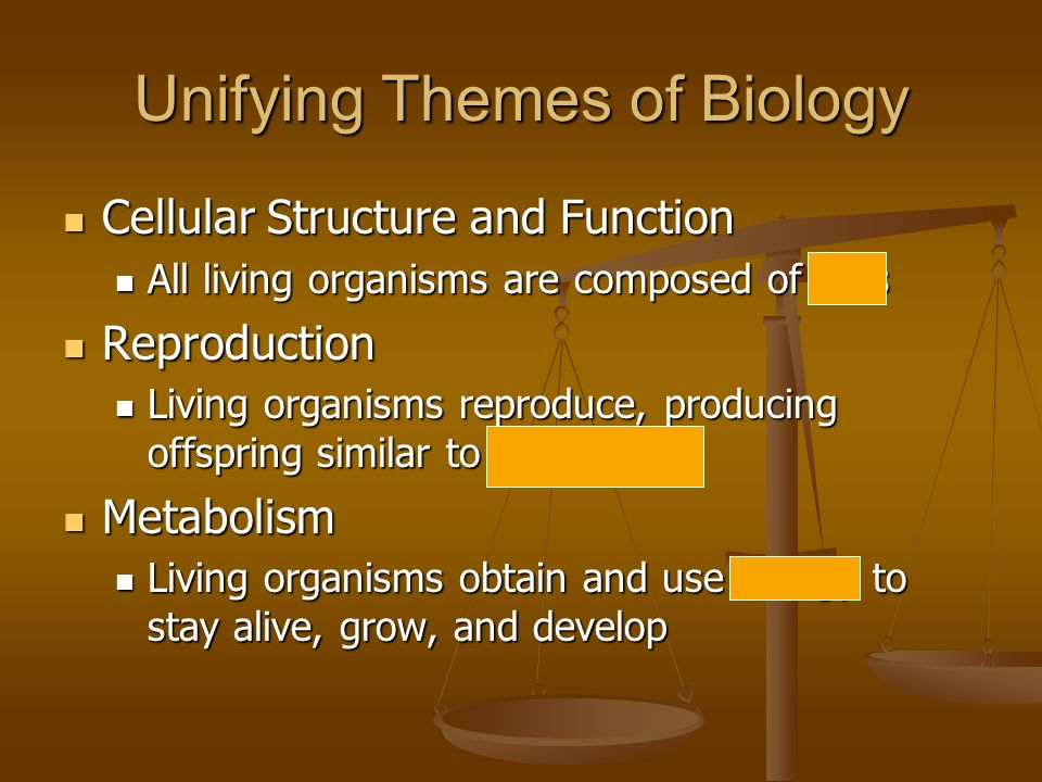 Unifying Themes of Biology