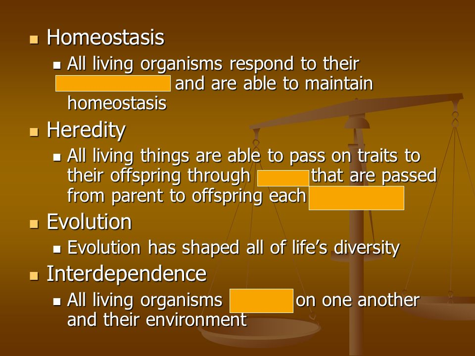 Homeostasis Heredity Evolution Interdependence