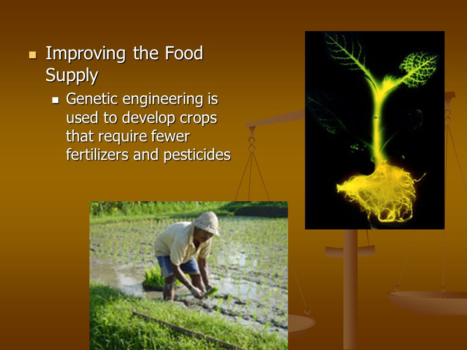 Improving the Food Supply
