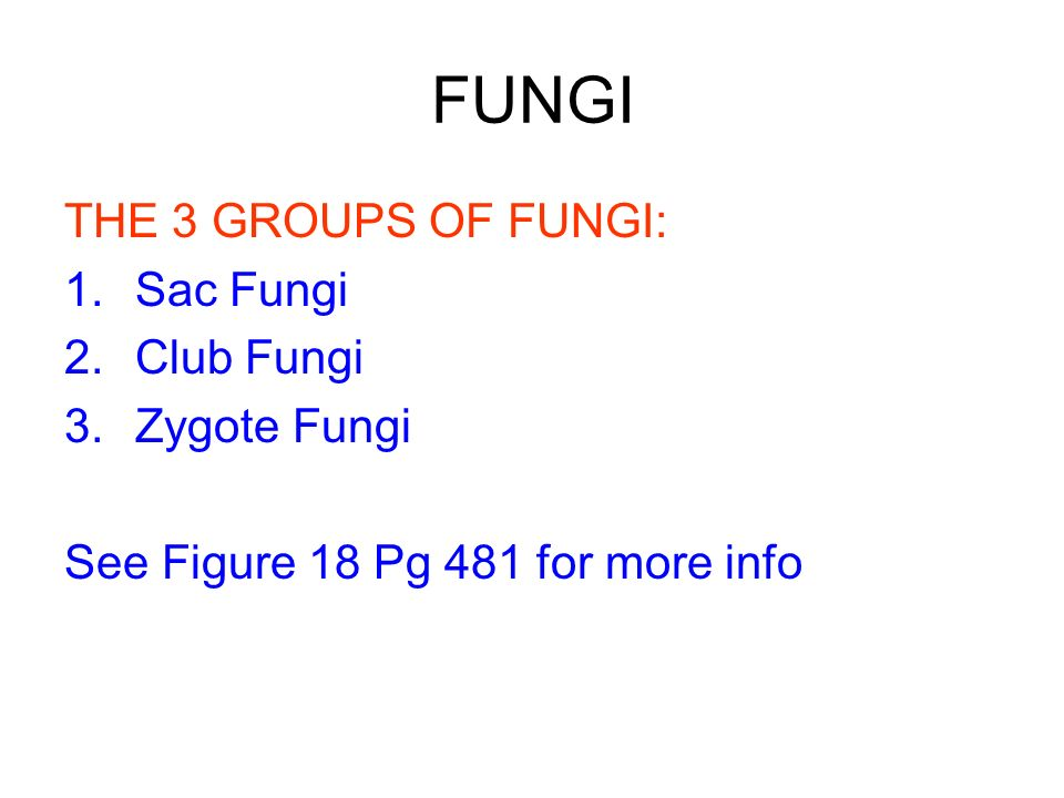 FUNGI THE 3 GROUPS OF FUNGI: Sac Fungi Club Fungi Zygote Fungi