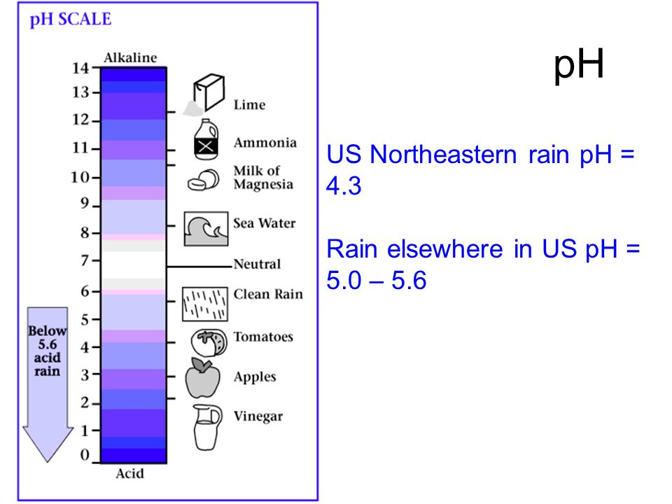 pH US Northeastern rain pH = 4.3 Rain elsewhere in US pH = 5.0 – 5.6
