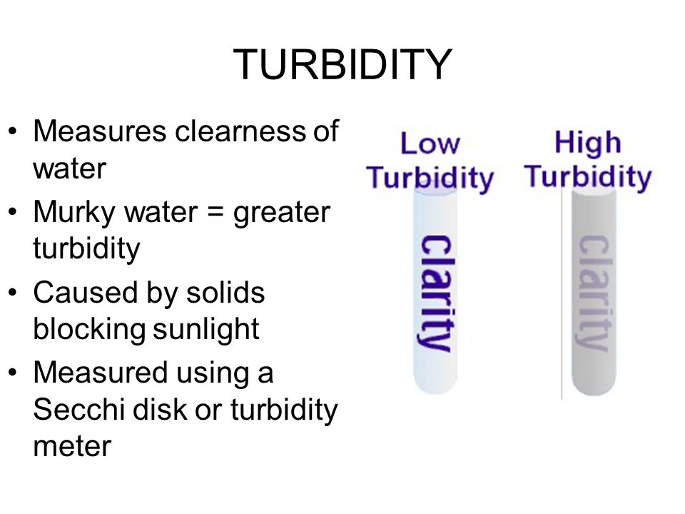 TURBIDITY Measures clearness of water Murky water = greater turbidity