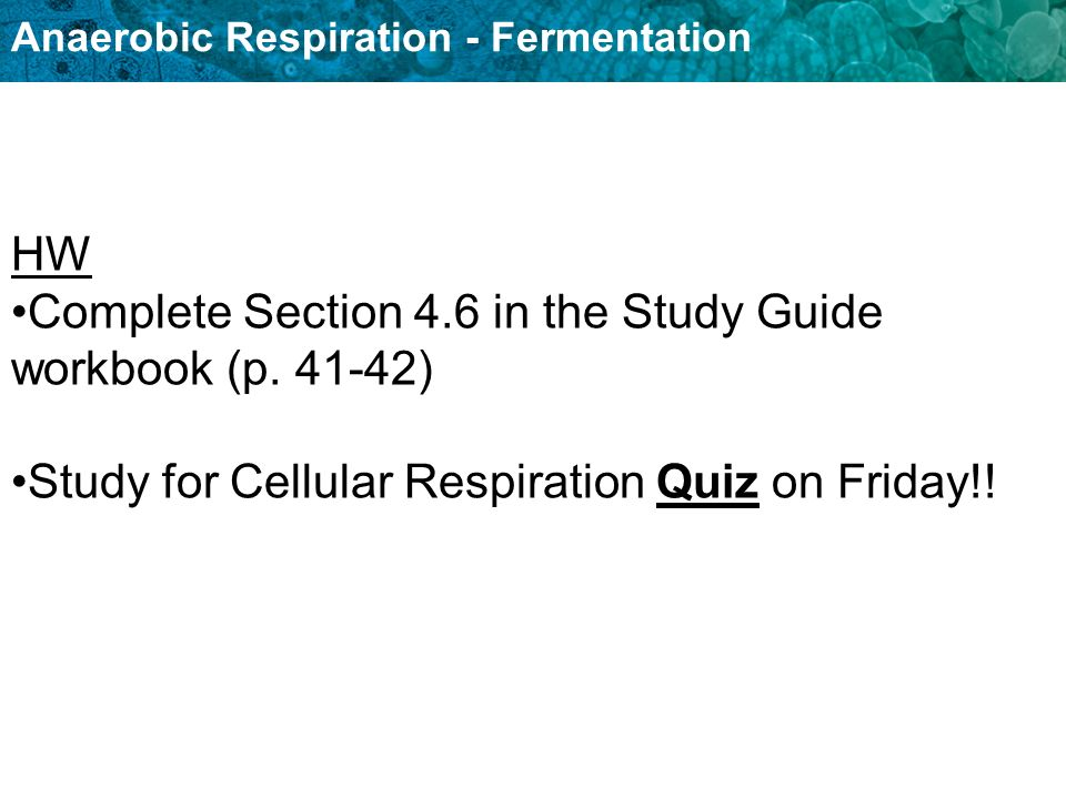 HW Complete Section 4.6 in the Study Guide workbook (p.