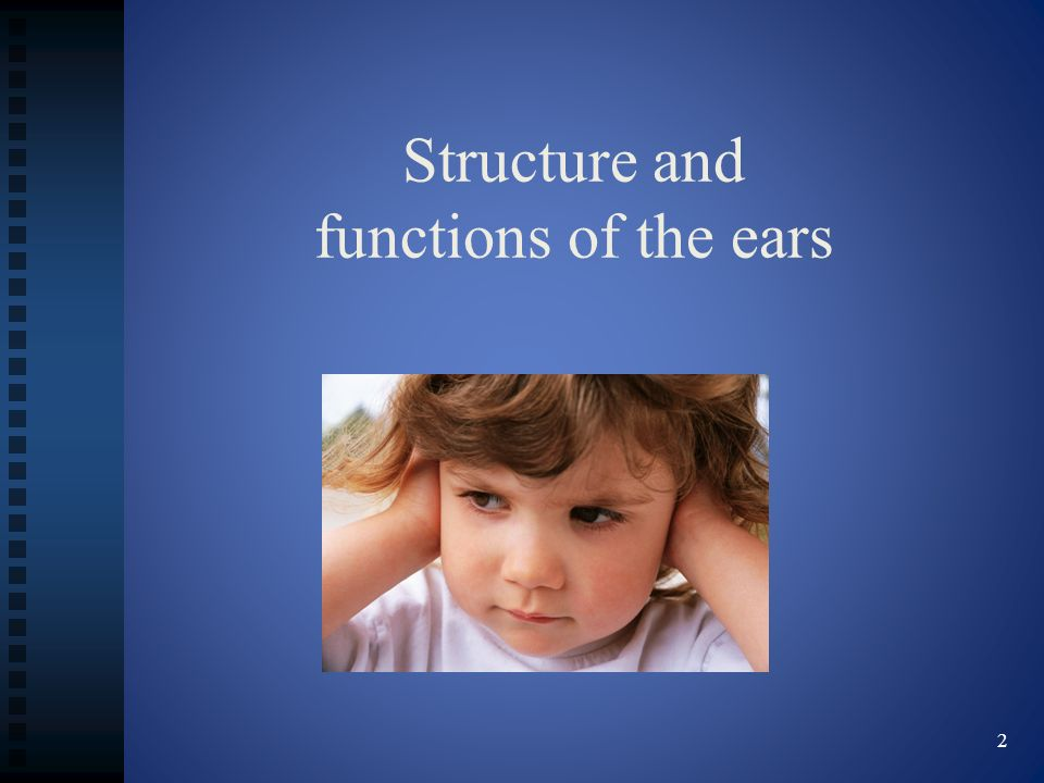 Structure and functions of the ears