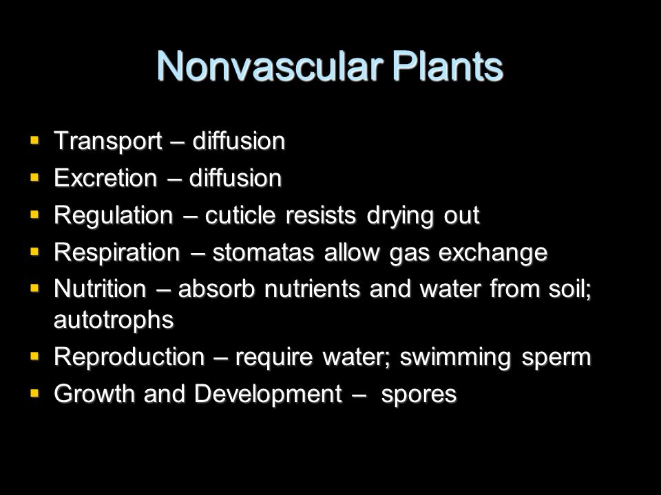Nonvascular Plants Transport – diffusion Excretion – diffusion