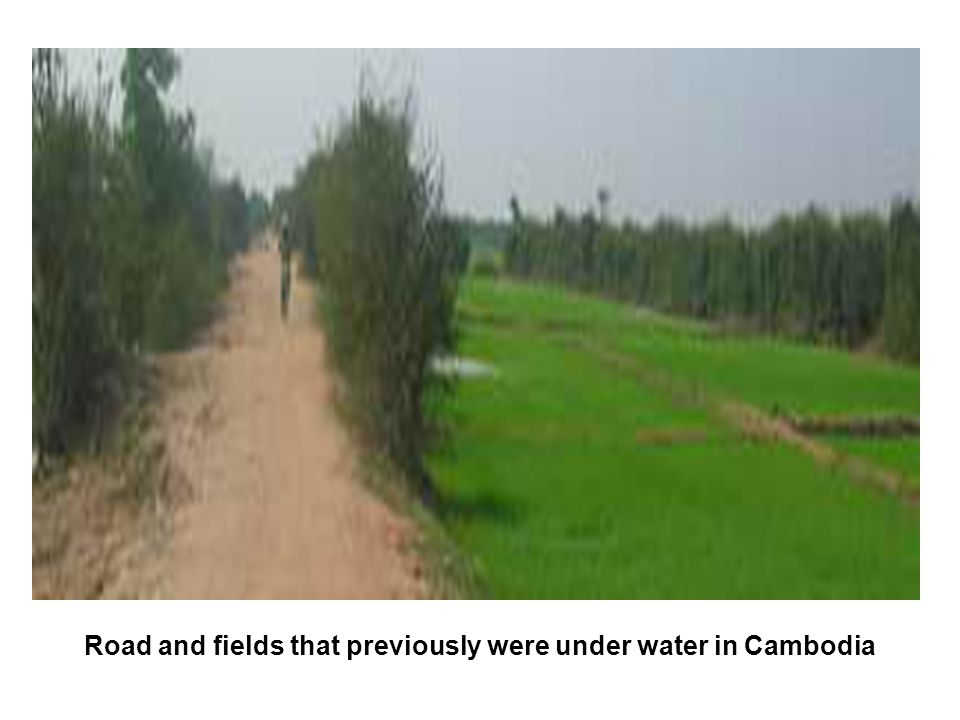 Road and fields that previously were under water in Cambodia