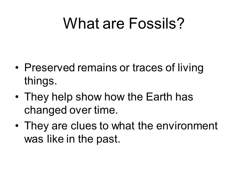 What are Fossils Preserved remains or traces of living things.