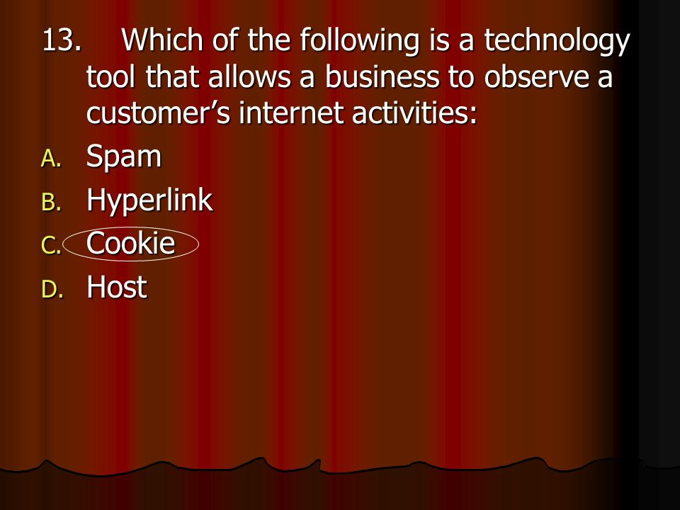13. Which of the following is a technology tool that allows a business to observe a customer's internet activities: