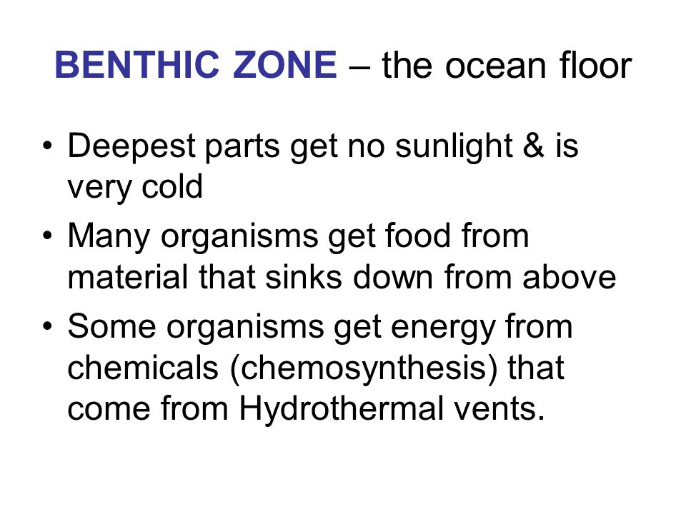 BENTHIC ZONE – the ocean floor