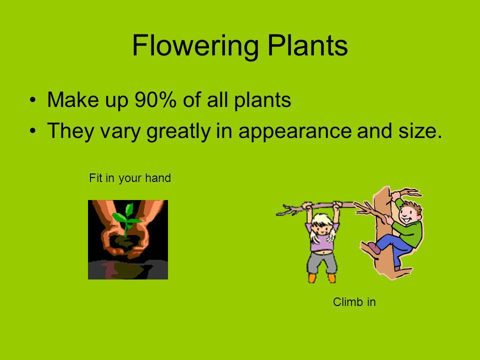 Flowering Plants Make up 90% of all plants