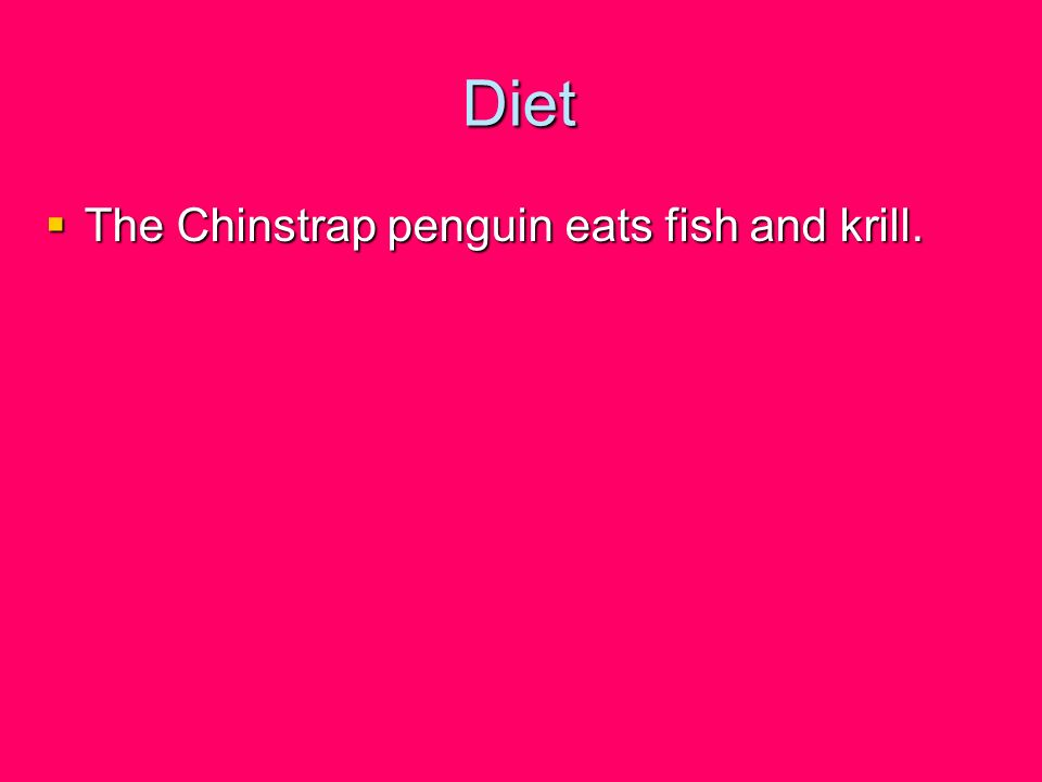 Diet The Chinstrap penguin eats fish and krill.