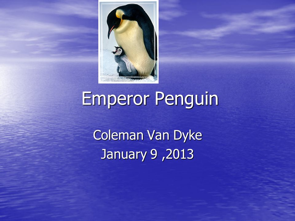 Coleman Van Dyke January 9 ,2013