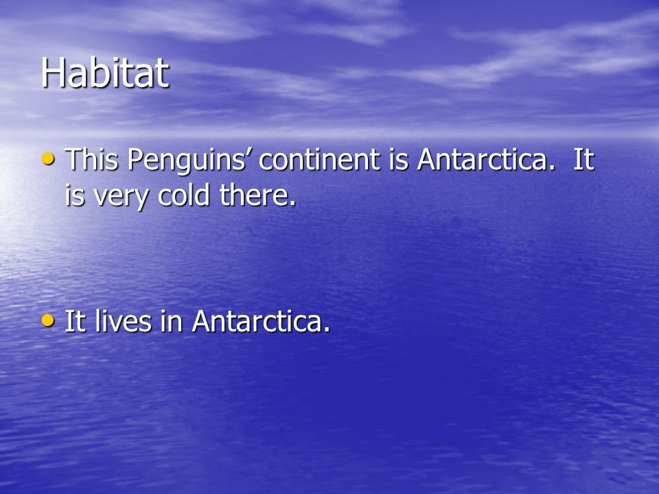 Habitat This Penguins' continent is Antarctica. It is very cold there.