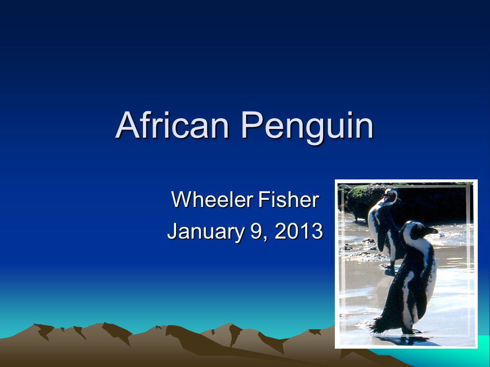 Wheeler Fisher January 9, 2013