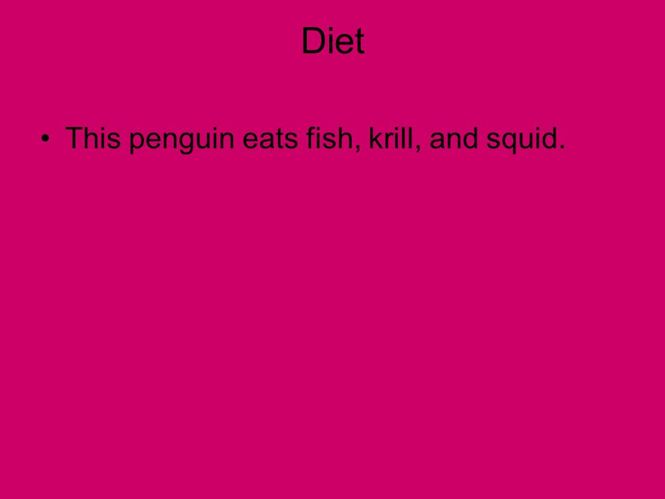 Diet This penguin eats fish, krill, and squid.