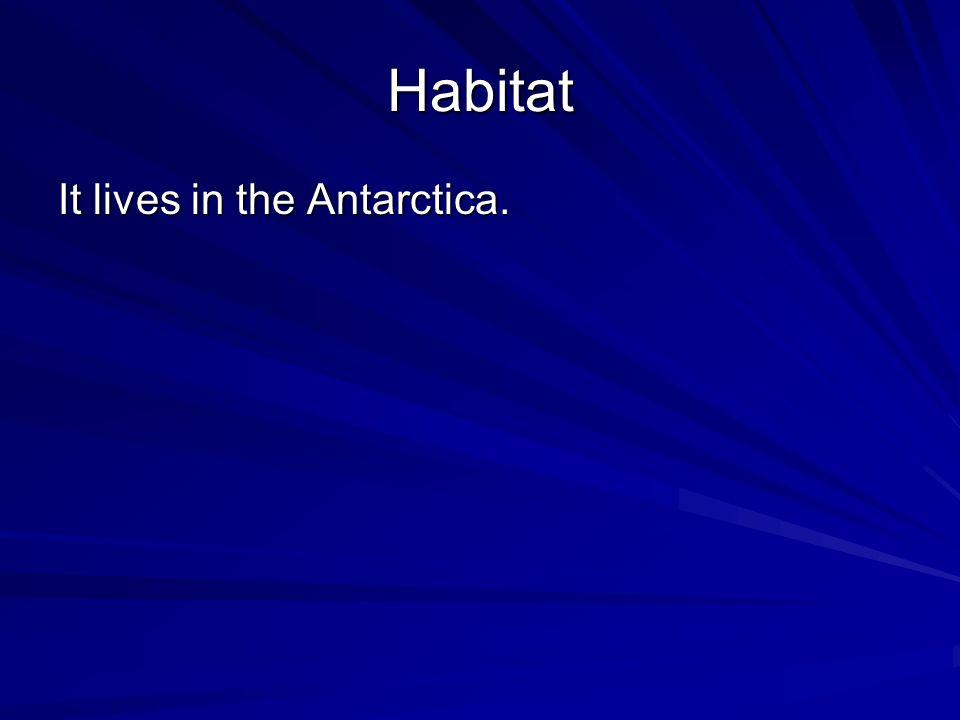 Habitat It lives in the Antarctica.