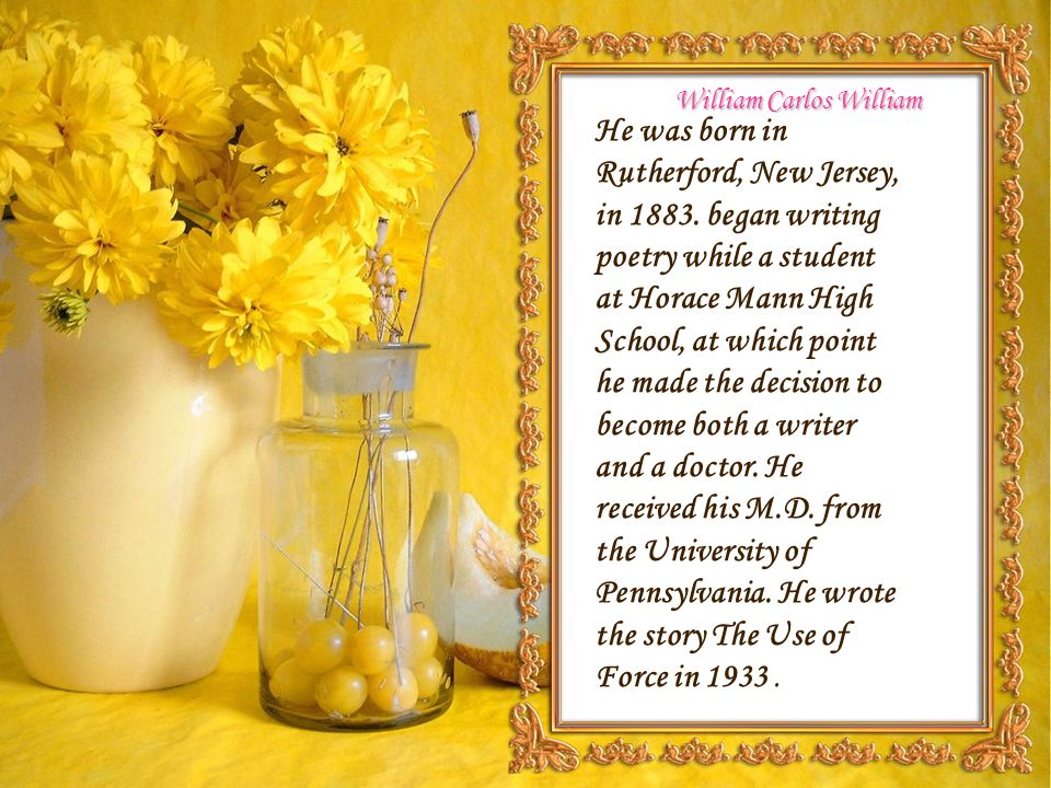 essay on the use of force by william carlos williams