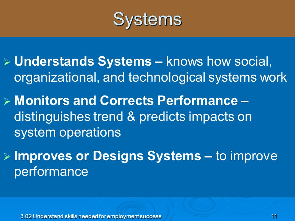 Systems Understands Systems – knows how social, organizational, and technological systems work.