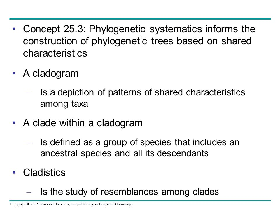 A clade within a cladogram