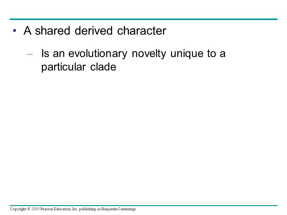 A shared derived character