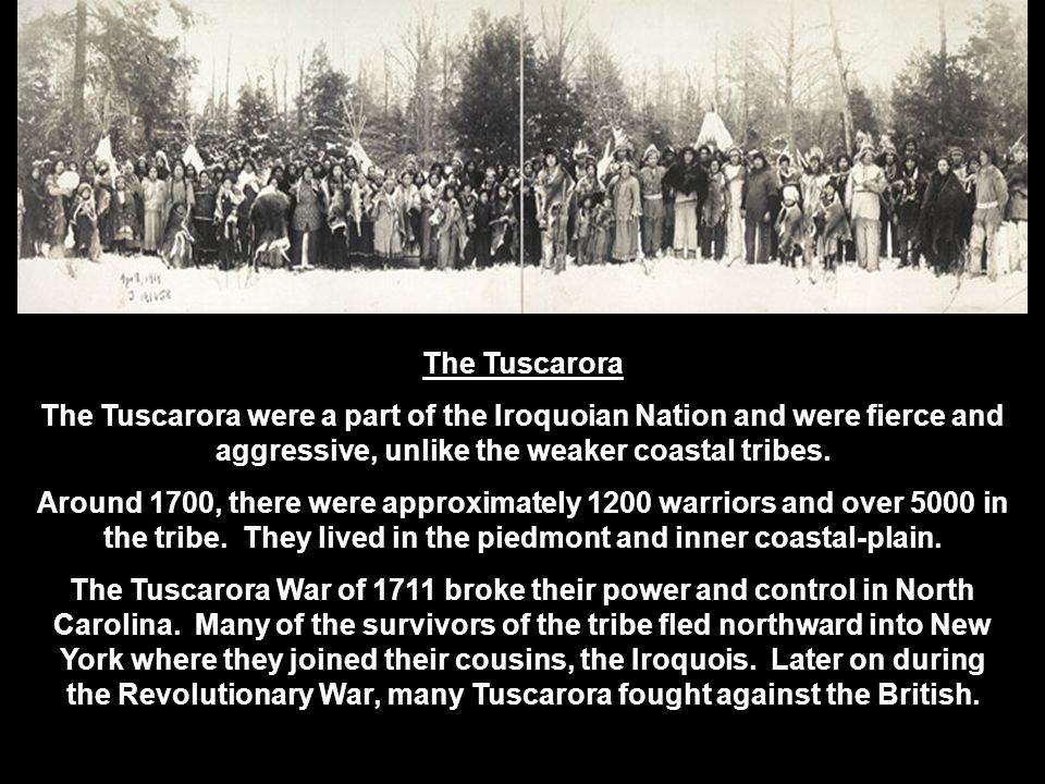 The Tuscarora The Tuscarora were a part of the Iroquoian Nation and were fierce and aggressive, unlike the weaker coastal tribes.