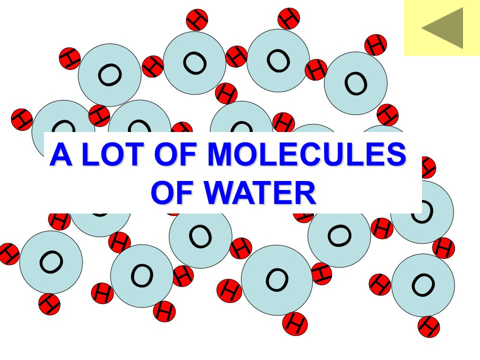 A LOT OF MOLECULES OF WATER