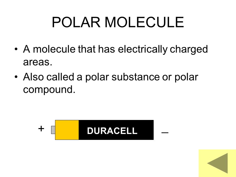 POLAR MOLECULE _ + A molecule that has electrically charged areas.