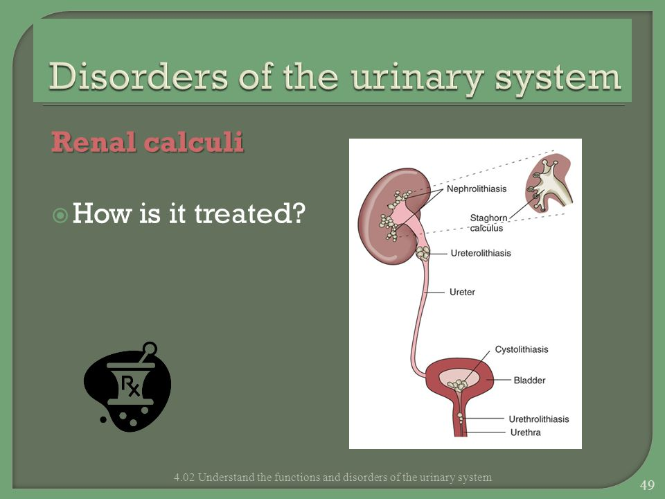 Disorders of the urinary system