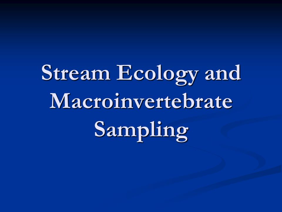 Stream Ecology and Macroinvertebrate Sampling