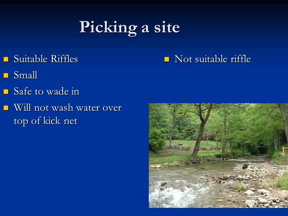 Picking a site Suitable Riffles Small Safe to wade in