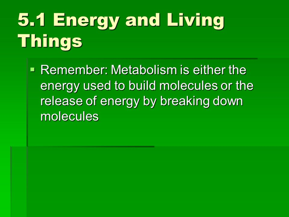 5.1 Energy and Living Things