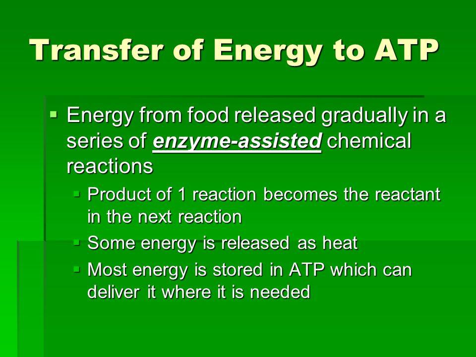 Transfer of Energy to ATP