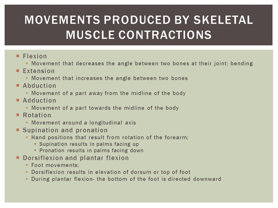 Movements produced by skeletal muscle contractions