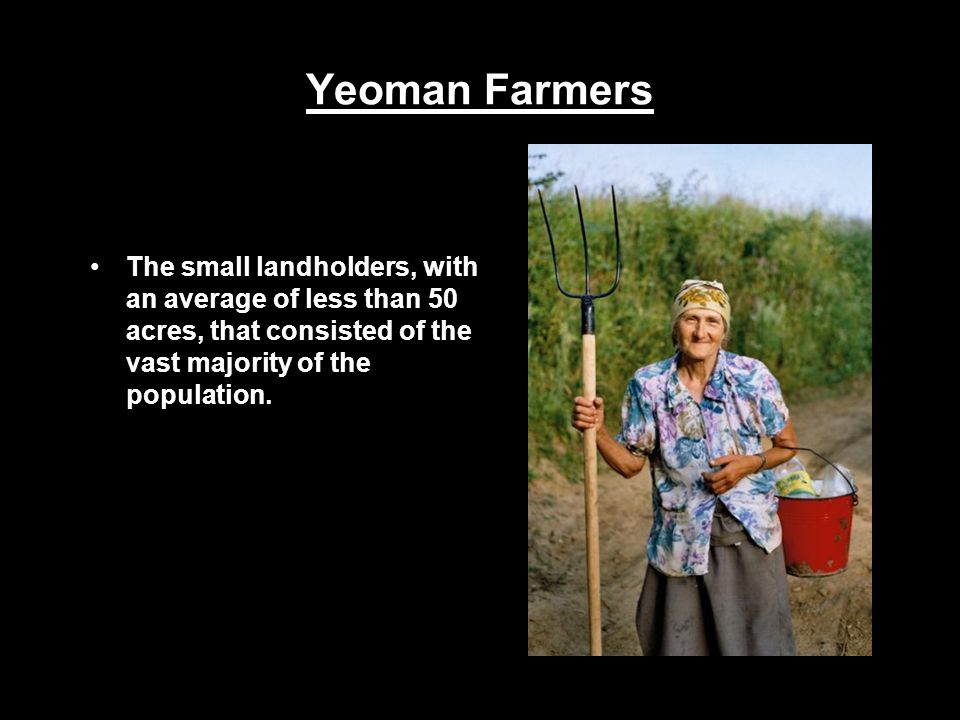 Yeoman Farmers The small landholders, with an average of less than 50 acres, that consisted of the vast majority of the population.
