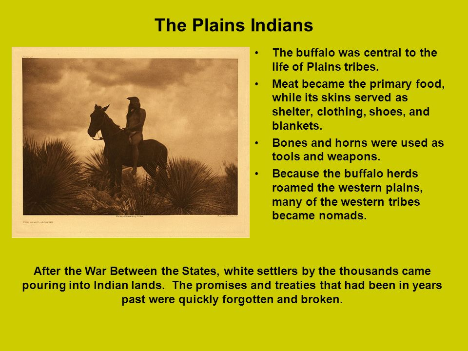 The Plains Indians The buffalo was central to the life of Plains tribes.