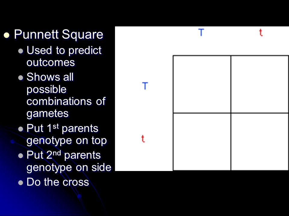 Punnett Square Used to predict outcomes