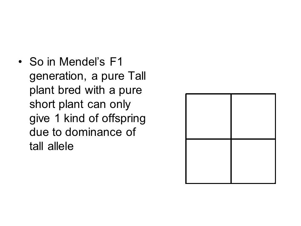 So in Mendel's F1 generation, a pure Tall plant bred with a pure short plant can only give 1 kind of offspring due to dominance of tall allele