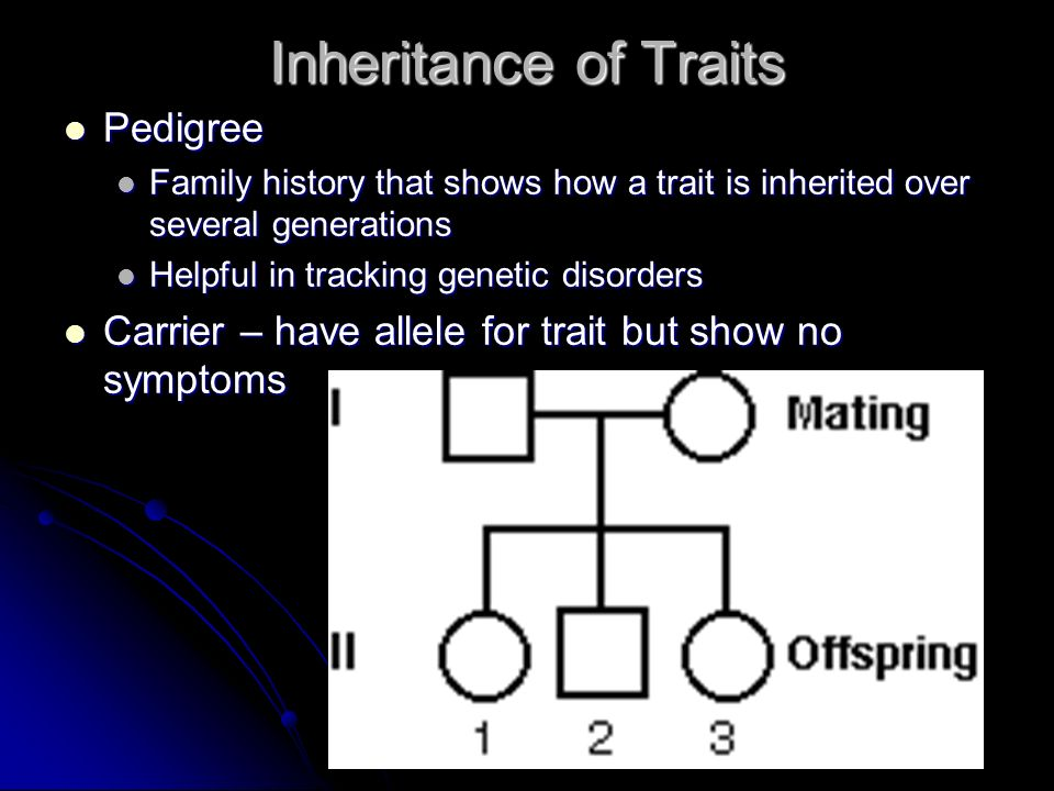 Inheritance of Traits Pedigree