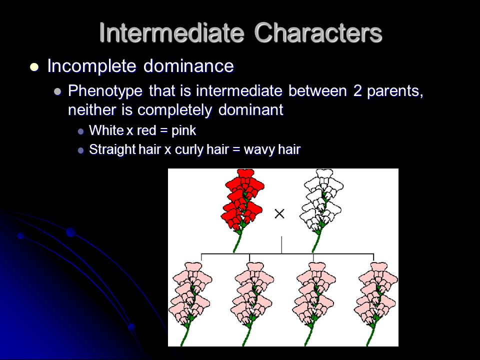 Intermediate Characters