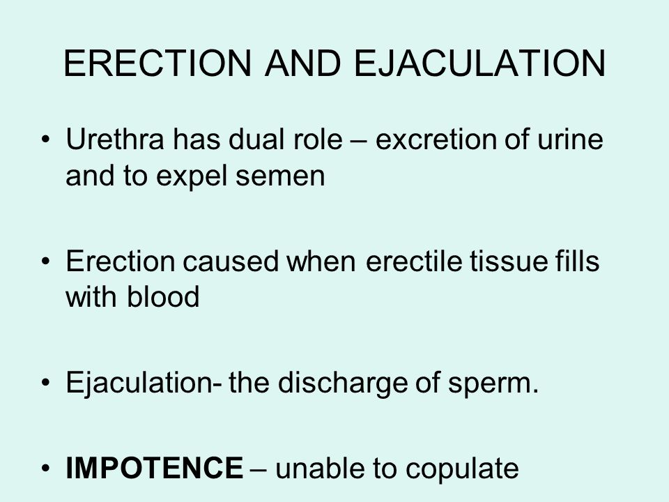 ERECTION AND EJACULATION