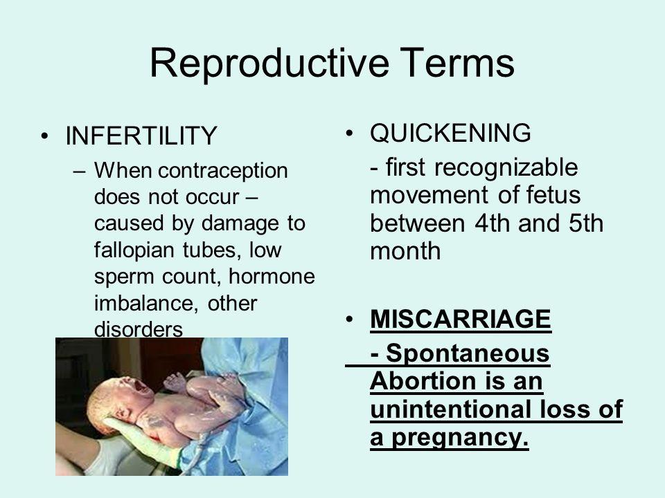 Reproductive Terms INFERTILITY QUICKENING