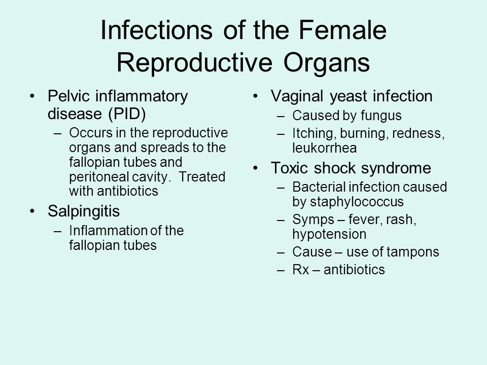 Infections of the Female Reproductive Organs