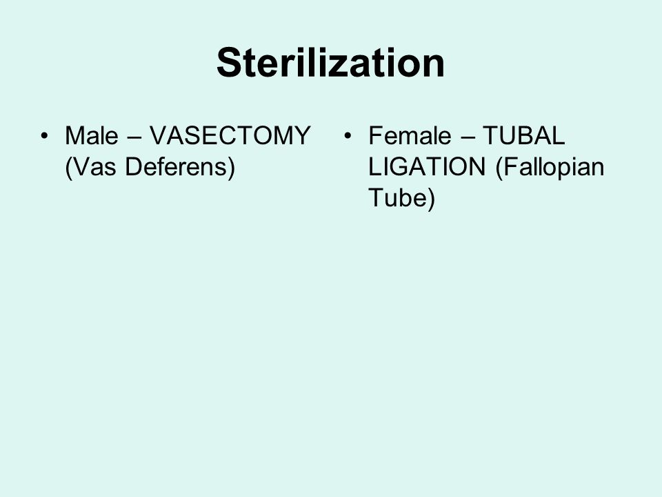 Sterilization Male – VASECTOMY (Vas Deferens)