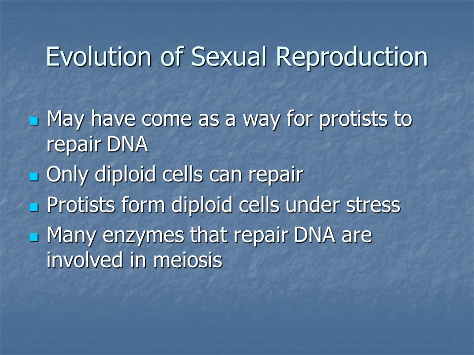 Evolution of Sexual Reproduction