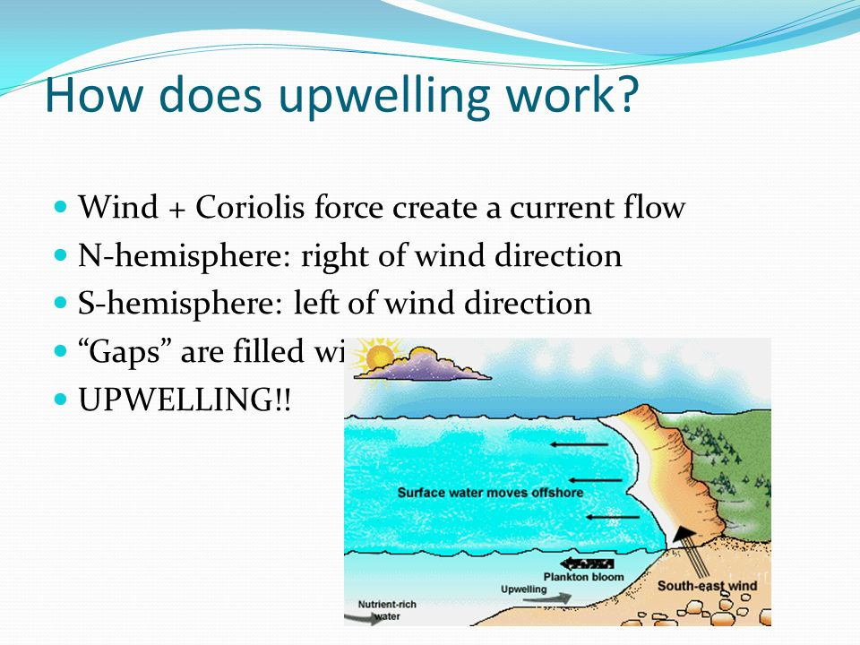 How does upwelling work
