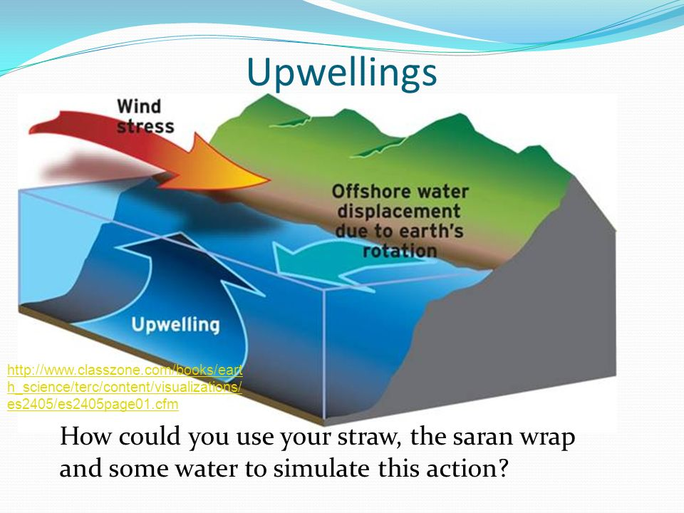 Upwellings http://www.classzone.com/books/earth_science/terc/content/visualizations/es2405/es2405page01.cfm.