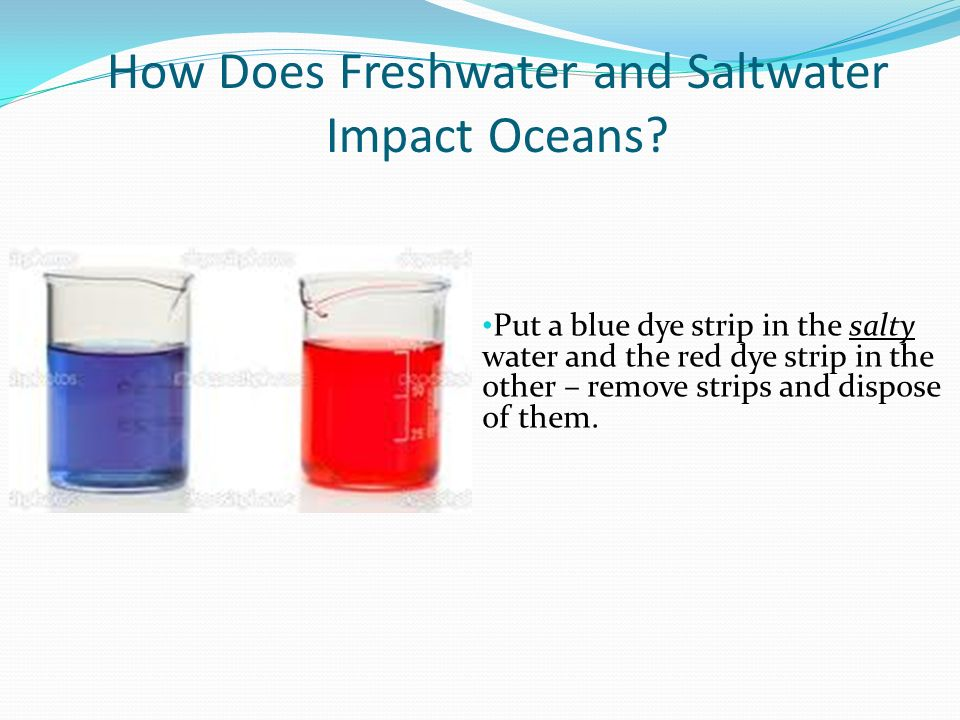 How Does Freshwater and Saltwater Impact Oceans