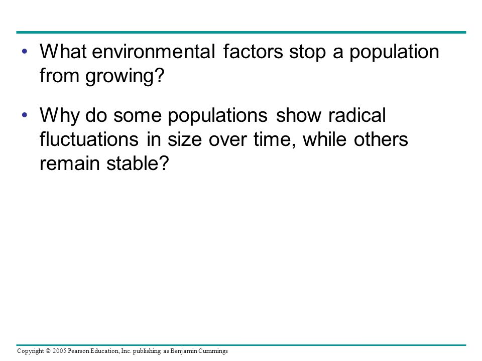 What environmental factors stop a population from growing
