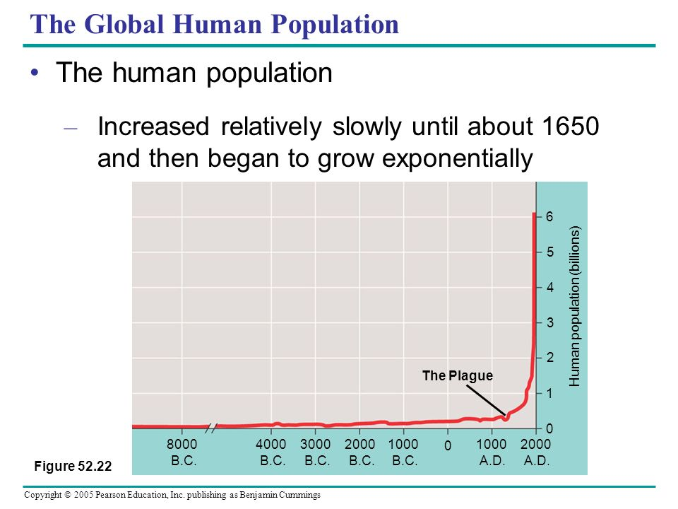 The Global Human Population